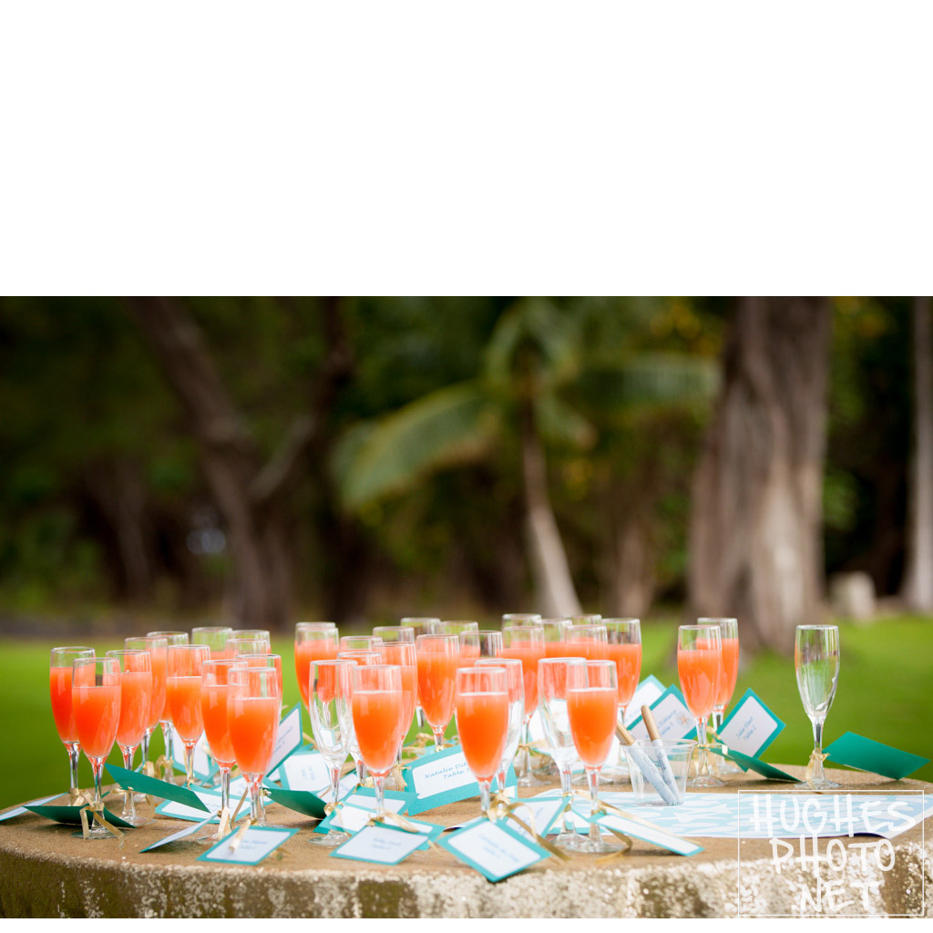 Cheers! To your Makena Maui Wedding